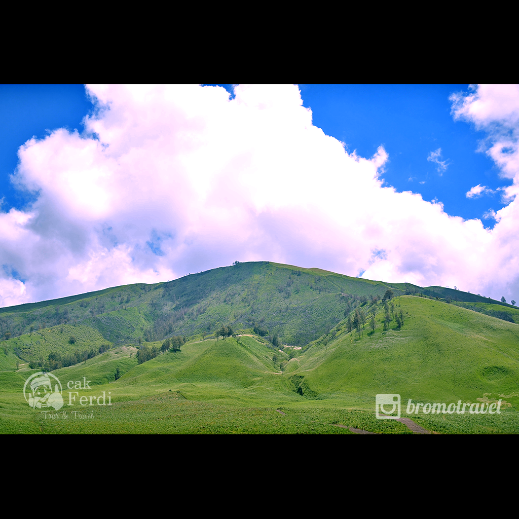gambar gunung bromo - bukit teletubies