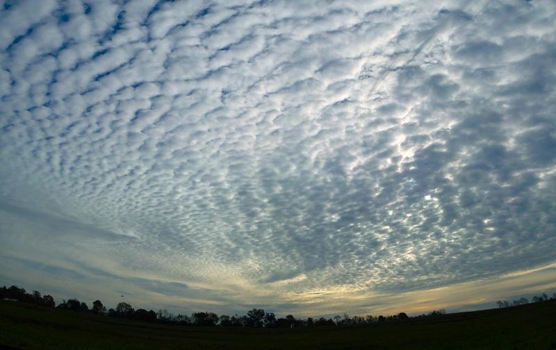 sumber : anipgendut.blogspot.com