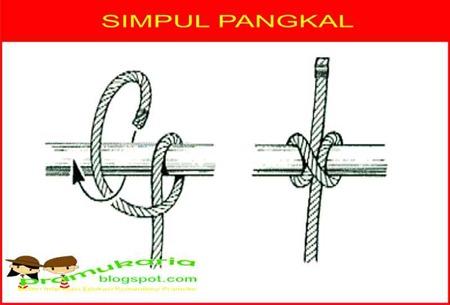 sumber : https://pramukaria.blogspot.co.id/2013/05/membuat-simpul-pangkal-clove-hitch.html