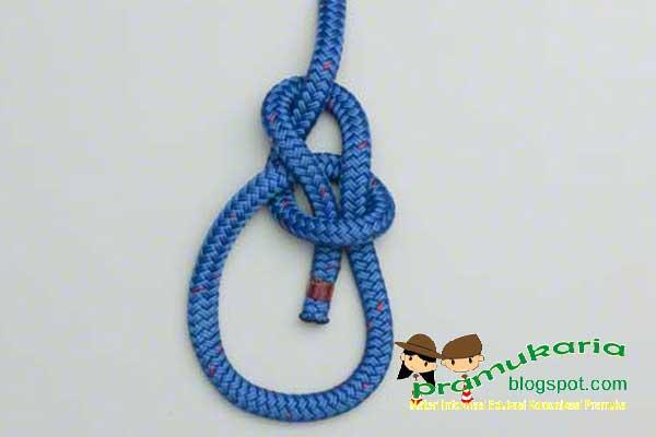 sumber : https://pramukaria.blogspot.co.id/2013/06/membuat-simpul-tiang-bowline-knot.html
